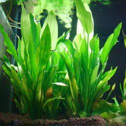 2pc Artificial Water Aquatic Green Grass Plant Lawn Aquarium