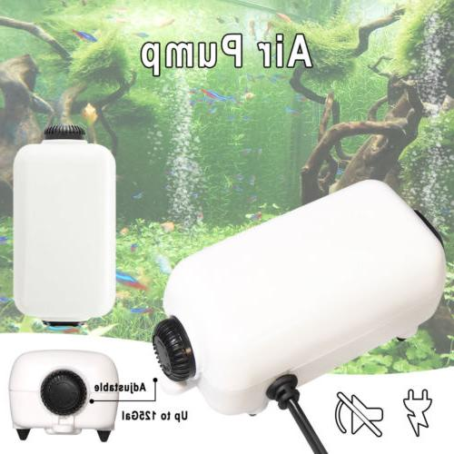 65GPH Water Fish Tank Up to Outlets