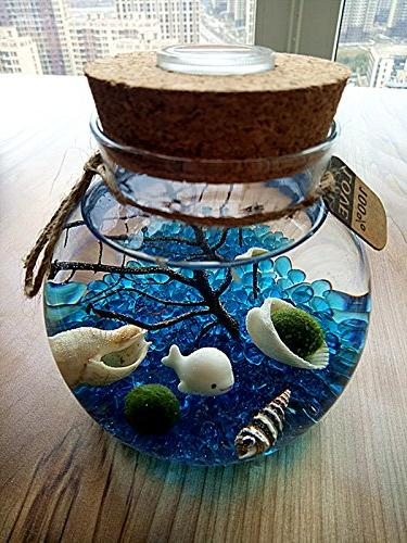 LED - Globe Jar with Ball Blue Glass Fan Coral Seashells Office Desk Decor Table Centerpiece Presents