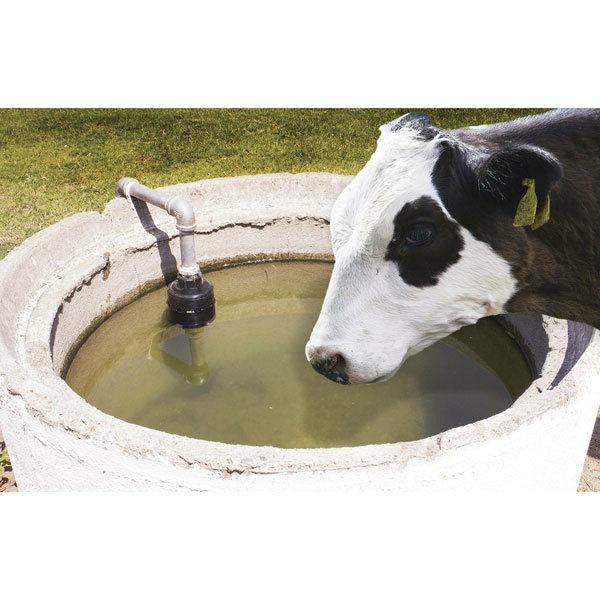 "Hudson Valve - V - 1"" - Cattle, Tanks Continuous Water Great!"
