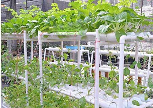 INTBUYING Hydroponic System Leafy Pipes 3 Plant Sites