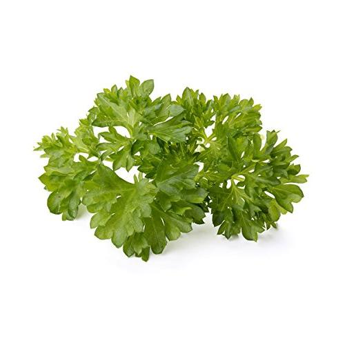Click and Grow Garden Parsley Plant 3-Pack