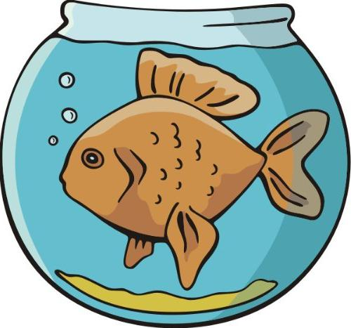 wall decal sticker me151 fish